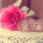 Con Yêu Mẹ Nhiều Lắm Mẹ Ơi