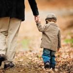 Gà trống nuôi con nghĩ gì về bà mẹ đơn thân ?
