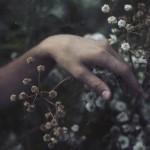 Cuộc sống không như là mơ…